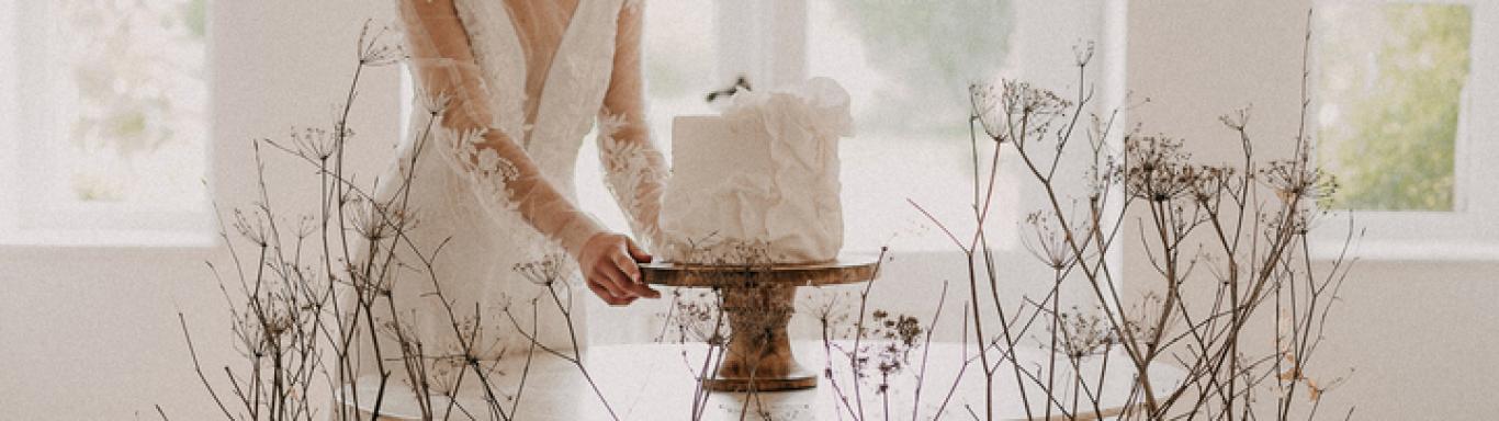 Art Cake by Aline - Kuchen