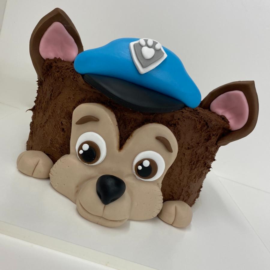 Art Cake by Aline - Kindergeburtstag